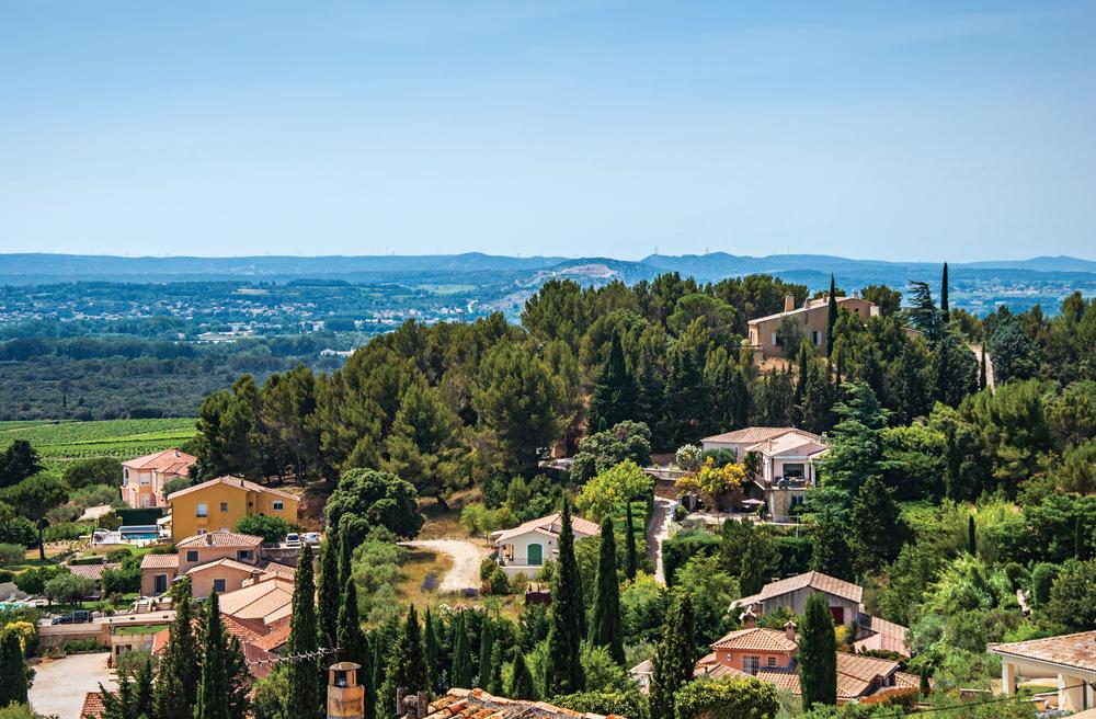 Camping vert en Provence